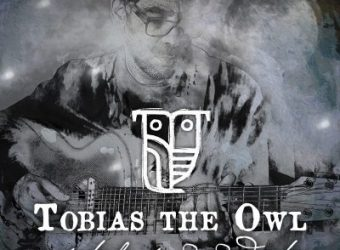 Tobias-The-Owl-A-Safe-Harbor-for-Wayward-Echoes-e1533536362285